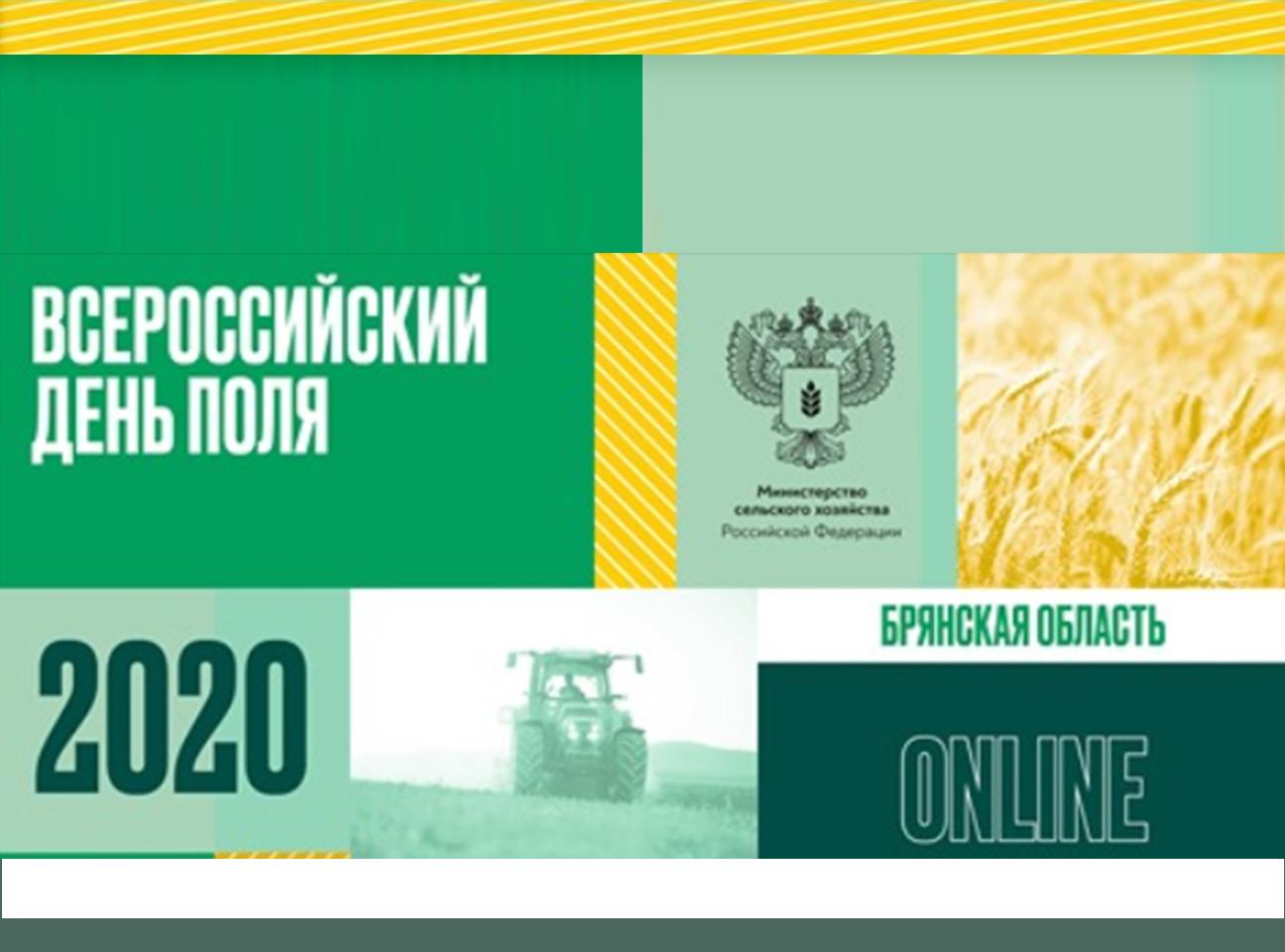 Datanomics стал участником Всероссийского Дня Поля 2020